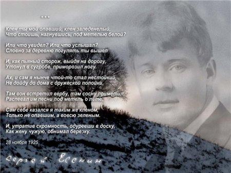 Есенин клен ты мой опавший стих