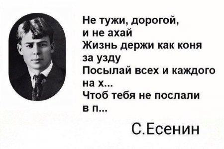 Сергей Есенин стихи о жизни