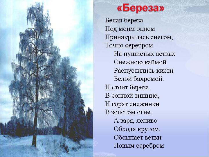 Стих белая берез под
