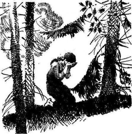 Федот Кадушкин - трагическая фигура своего времени (по роману И. Акулова «Касьян Остудный»)